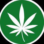 Marijuana Videos