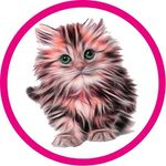 Cat | Kitten | Cute