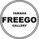 Yamaha Freego 125 Gallery