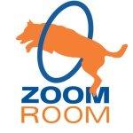 Zoom Room Redondo Beach