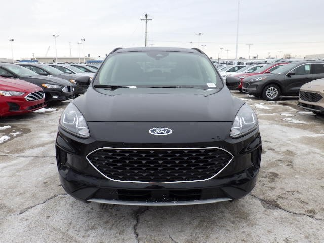 ford-escape-2020-1FMCU0G69LUA74182-8.jpeg