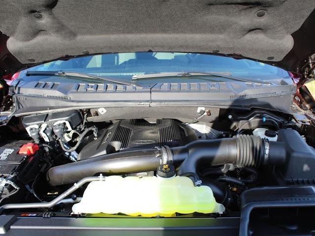 ford-f-150-2020-1FTEW1E41LKD19664-10.jpeg