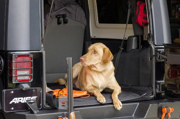 ARIES Seat Defender™ cargo blanket - hunting dog