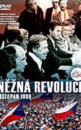 Něžná revoluce