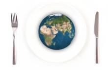 Umweltvergleich: Vegan vor Öko-Tierprodukten