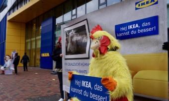IKEA reagiert auf unseren Protest