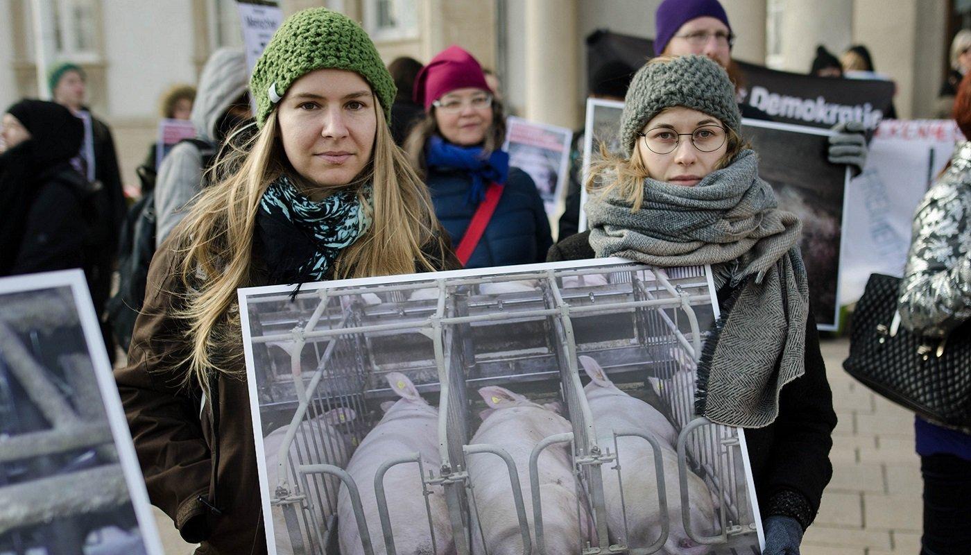 Aktivistinnen mit einem Foto von Schweinen in Kastenständen.
