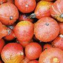 Vegane Kürbis-Rezepte für den Herbst