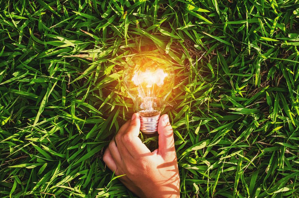 a lightbuld illuminated on top of a field of grass