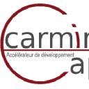 Carmine Capital_logo
