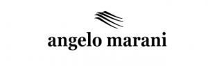 Angelo-Marani-Nantes