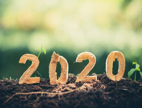 2020 projets jardin Vendée