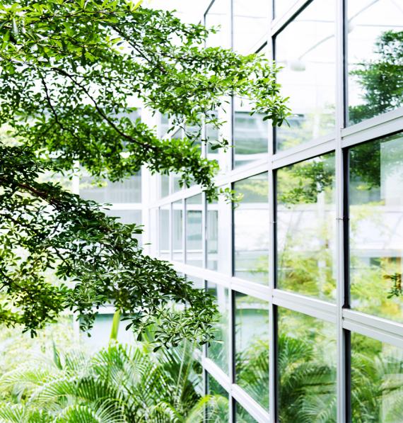 entretien espaces verts professionnels Vendée
