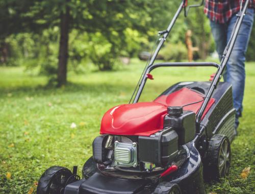 reprise des tontes printemps jardinier Vendée
