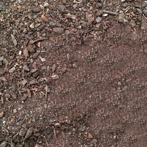 Substrats horticoles