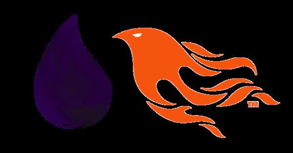 Phoenix & Elixir Schulung/Seminar/Workshop