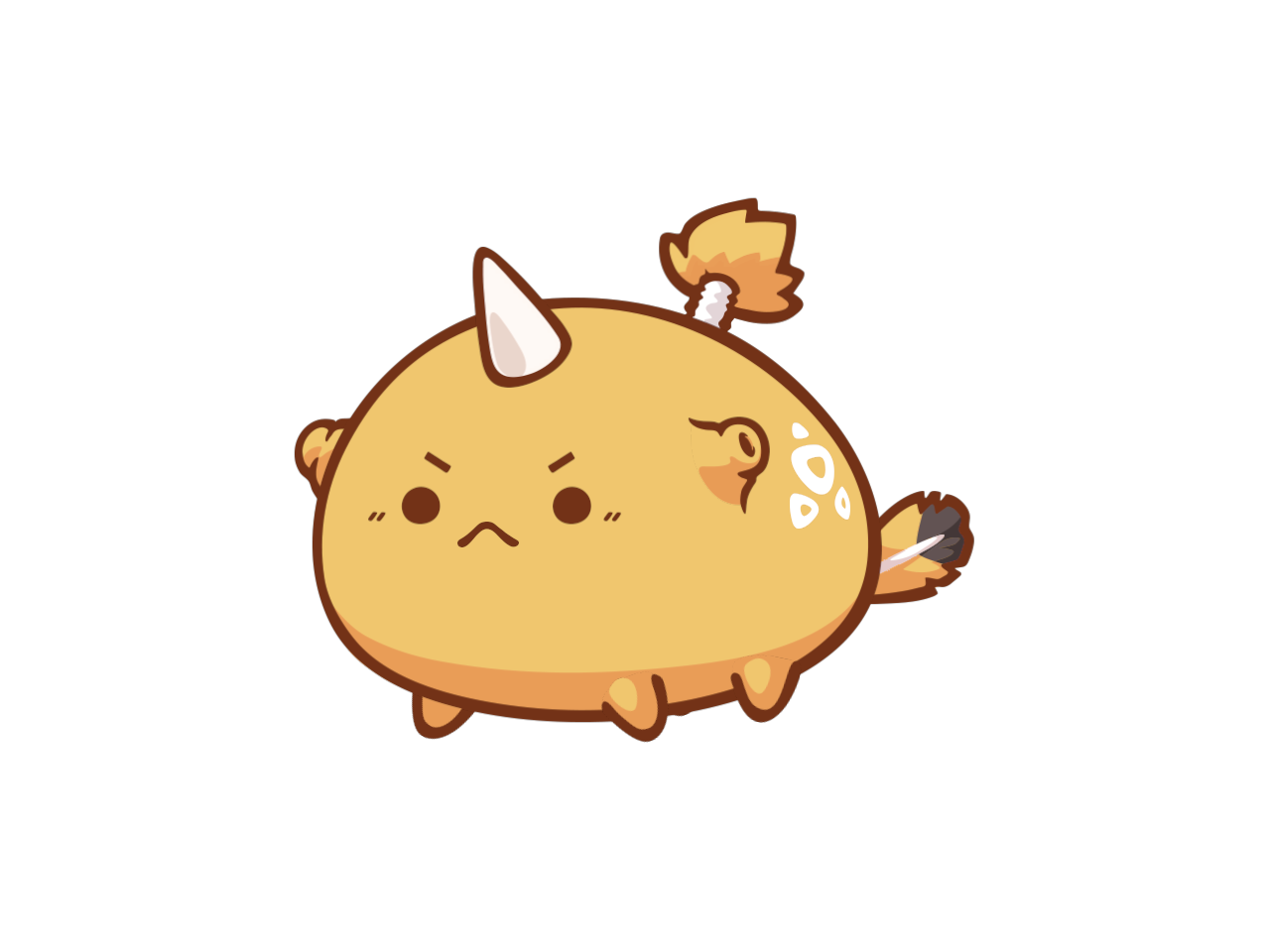 RIMP kotaro