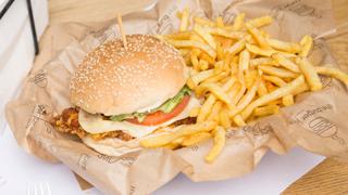 burger-joint-crispy-chicken-burger