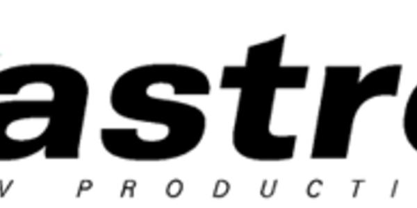ASTRO: Sprawozdanie niezależnego biegłego rewidenta za 2019 rok