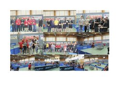 Cup 2014 Fotocollage.jpg