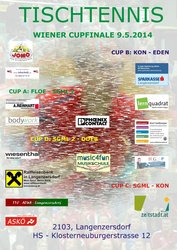 Cupfinale 2014 Plakat.jpg