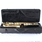 Hawk Student Gold Saxophone with Storage Case