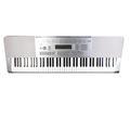Casio WK-225 76-Key Portable Electronic Musical Keyboard