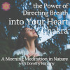 A Morning Meditation in Nature: the Power of Directing Breath into Your Heart Centre