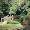 A Nascent Garden