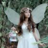 Safe Fairy Sleeps - Children's Meditation Story