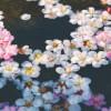 Sleep Hypnosis for a Quiet Mind - Cherry Blossom for Deep Sleep