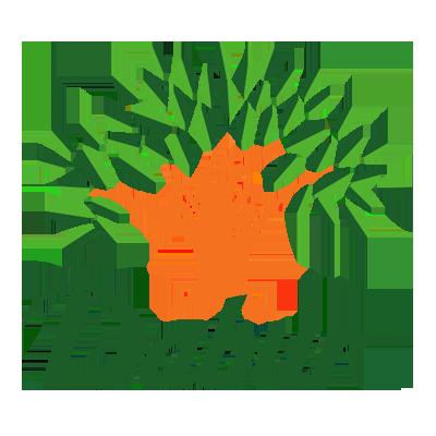 Dabur Case Study