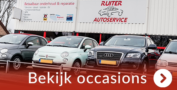 Ruiter Autoservice occasions