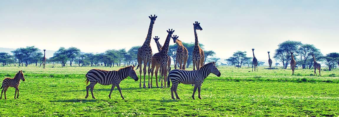 east-africa-destination-3