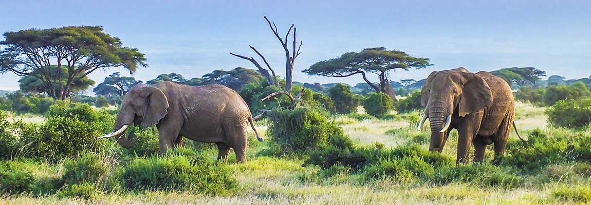 east-africa-destination-4