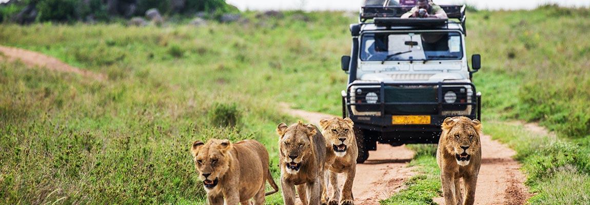 east-africa-destination-5