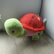 Черепаха музикальна