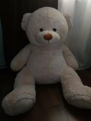 М'який ведмідь