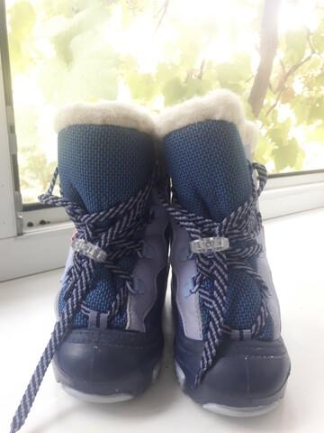Синие сапоги зимние