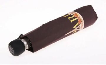 Напівавтомат підліткова парасоля Airton