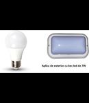 Pachet aplica exterior echipata cu bec  LED 7W