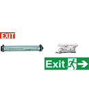 Lampa antiex 1x18W cu kit emergenta 1 ora