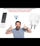 Solutie control  priza din telecomanda, on/off sau programat