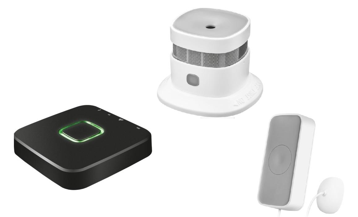Kit smart home protectie apa si foc