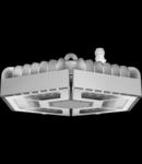 ESALITE HB - 24K - ELLIPTICAL OPTIC - DALI - 5700 K (CRI 80) - IP66 - CLASS I - RAL 9006 GREY