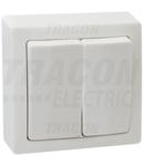Intrerupator dublu, pe tencuiala (pentru tapet) TFK105 10AX/250VAC, IP20 (105)
