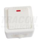 Comutator PT, cu lumina de semnalizare TR-PH06L 10AX/250VAC, IP54,(106)