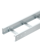 Jgheab tip scara- SSP100 Nema 20C, 6 m | Type SSP100 300 HDG