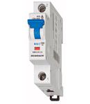 Interupator automat B25/1 6kA