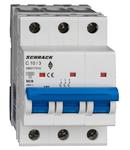 Intreruptor automat AMPARO 10kA, C 10A, 3 poli
